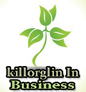 killorglin business webdesgin